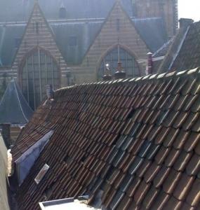 vervanging-dakpannen-horizon-onderhoud-03